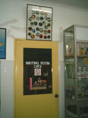 Waiting room reserved for customers with cats