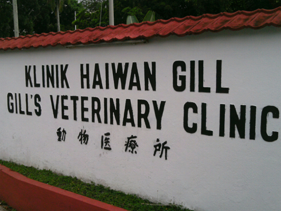 Gill's Veterinary Clinic